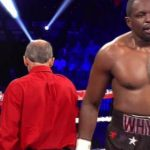 Crawford vs Indongo: Dillian Whyte blasts past Malcolm Tann on American debut