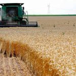 Global Warming For Real: 'We Could Lose Large Proportion of Major Food Crops'
