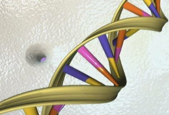 Idiocracy in Action: Biologist Reveals Why the Human Gene Pool is Becoming Worse