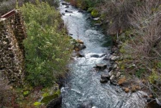 California salmon will have places to chill with dam removal