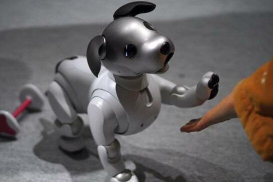 #PuppyLove Demand Outstrips Supply for New Robot-Dog in Japan