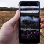 Live-streaming a marshland for fun – and science