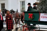 Trump, first lady accept official White House Christmas tree