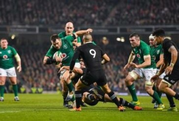 15 images to show the heroics of each of Ireland's stars